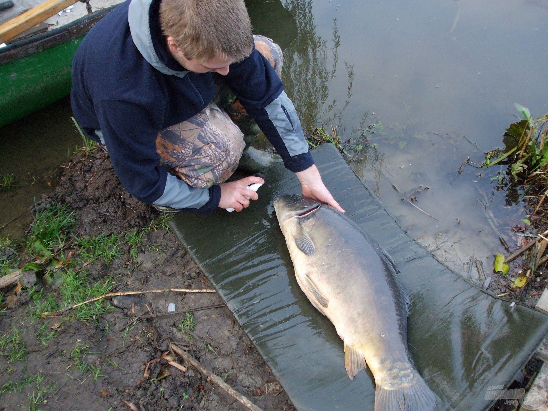 Régen is a halak biztonsága volt a legfontosabb