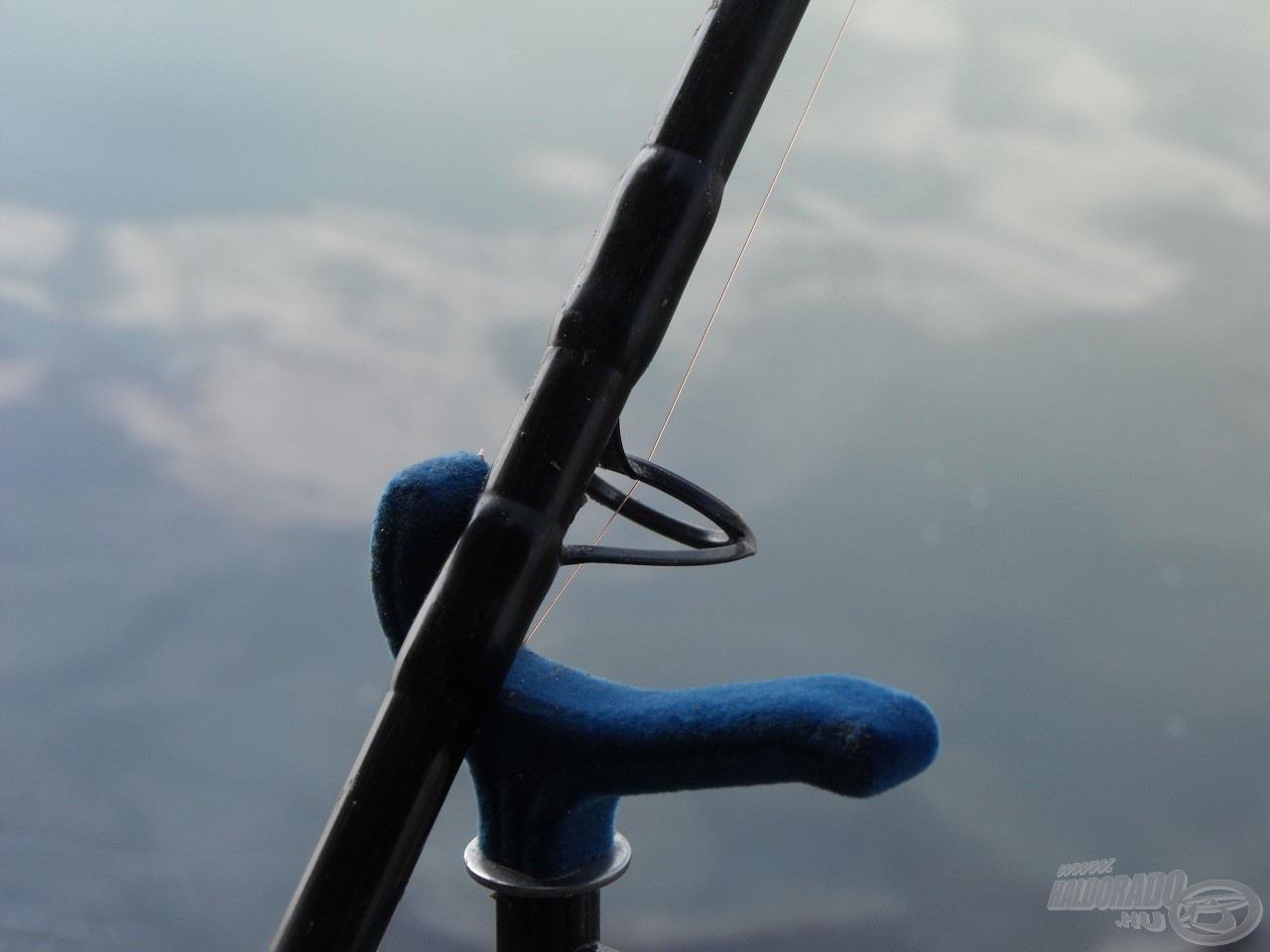 Jó szolgálatot tett a Haldorádó River Feeder Blue bottartó fej, hiszen az agresszívan kapó márna könnyen leránthatta volna a botot a tartóról