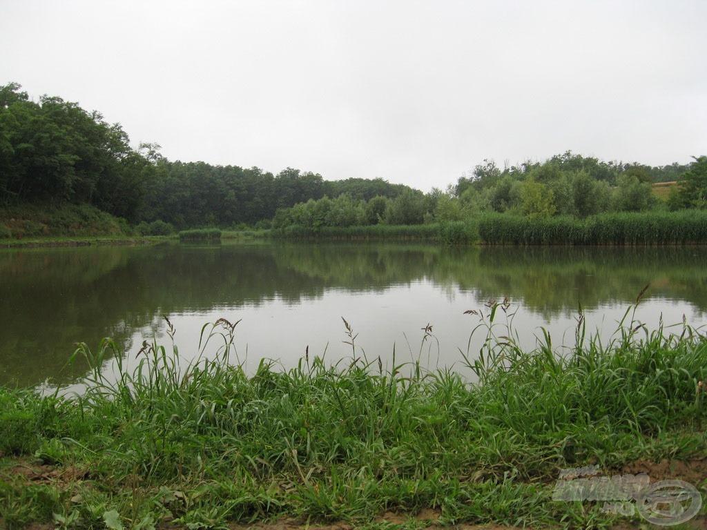 Gyönyörű tó sok hallal