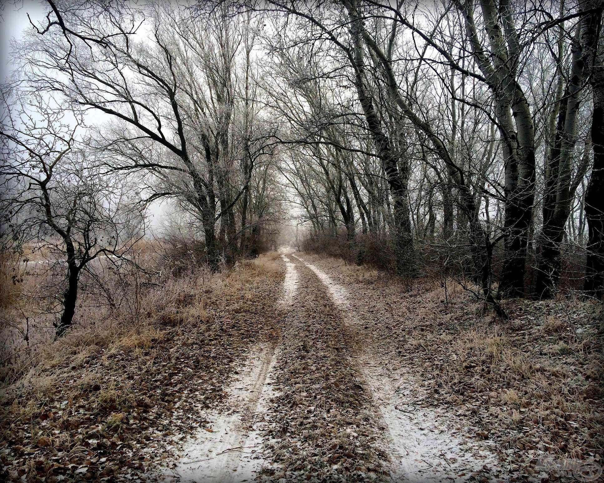 Elérkezett a hosszú téli séták ideje