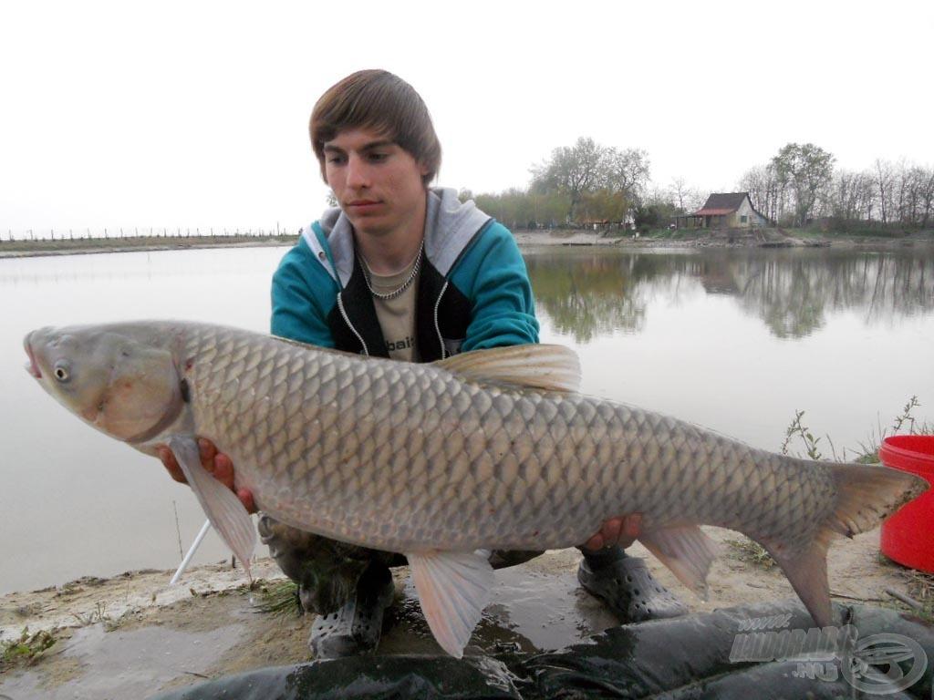 11,50 kg-os amurom