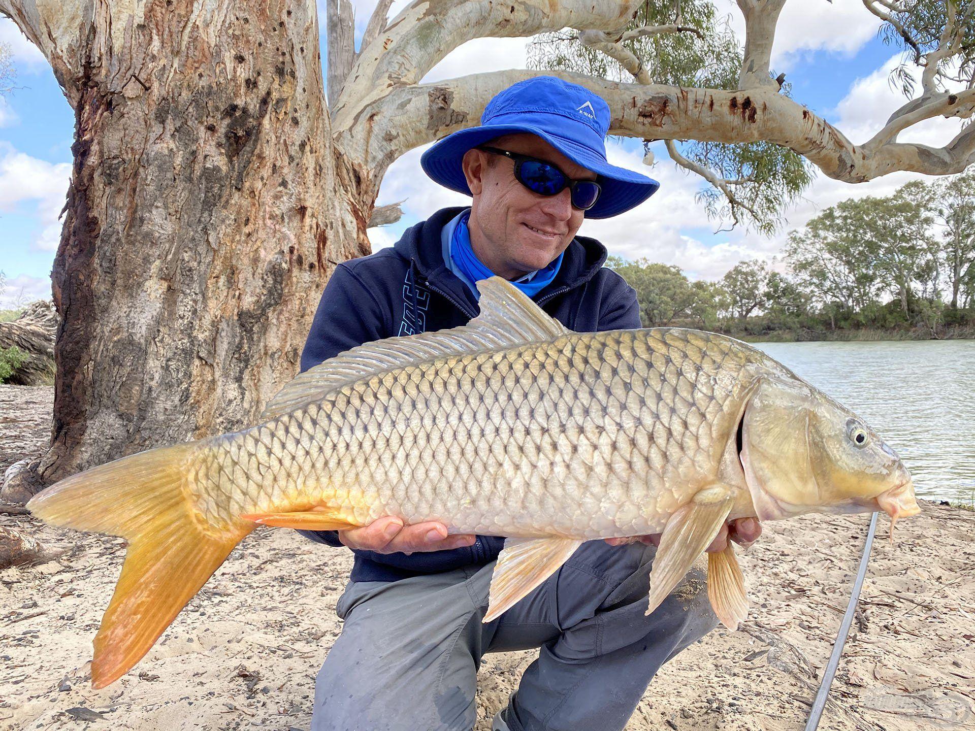 Íme, teljes terjedelmében a legnagyobb vad, horgot soha nem látott ausztrál nyurgapontyom