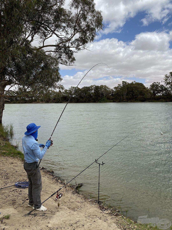 By Döme TEAM FEEDER Master Carp Pro 420LC botokkal horgásztam, ezekkel a veszélyes akadók mellől is el tudtam vezetni a halakat