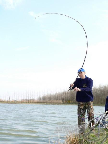 Így görbül a Pellet Feeder egy termetes hal alatt. Rendkívüli rugalmasságának köszönhetően nagyon rövid idő alatt felőrli a menekülő hal erejét