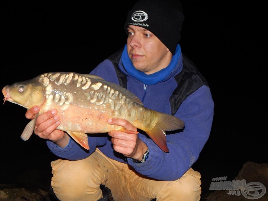 A hiteles beszámoló érdekében többször rápróbáltam a késő esti órákra is, és a halak aktivitása ilyenkor sem csökkent