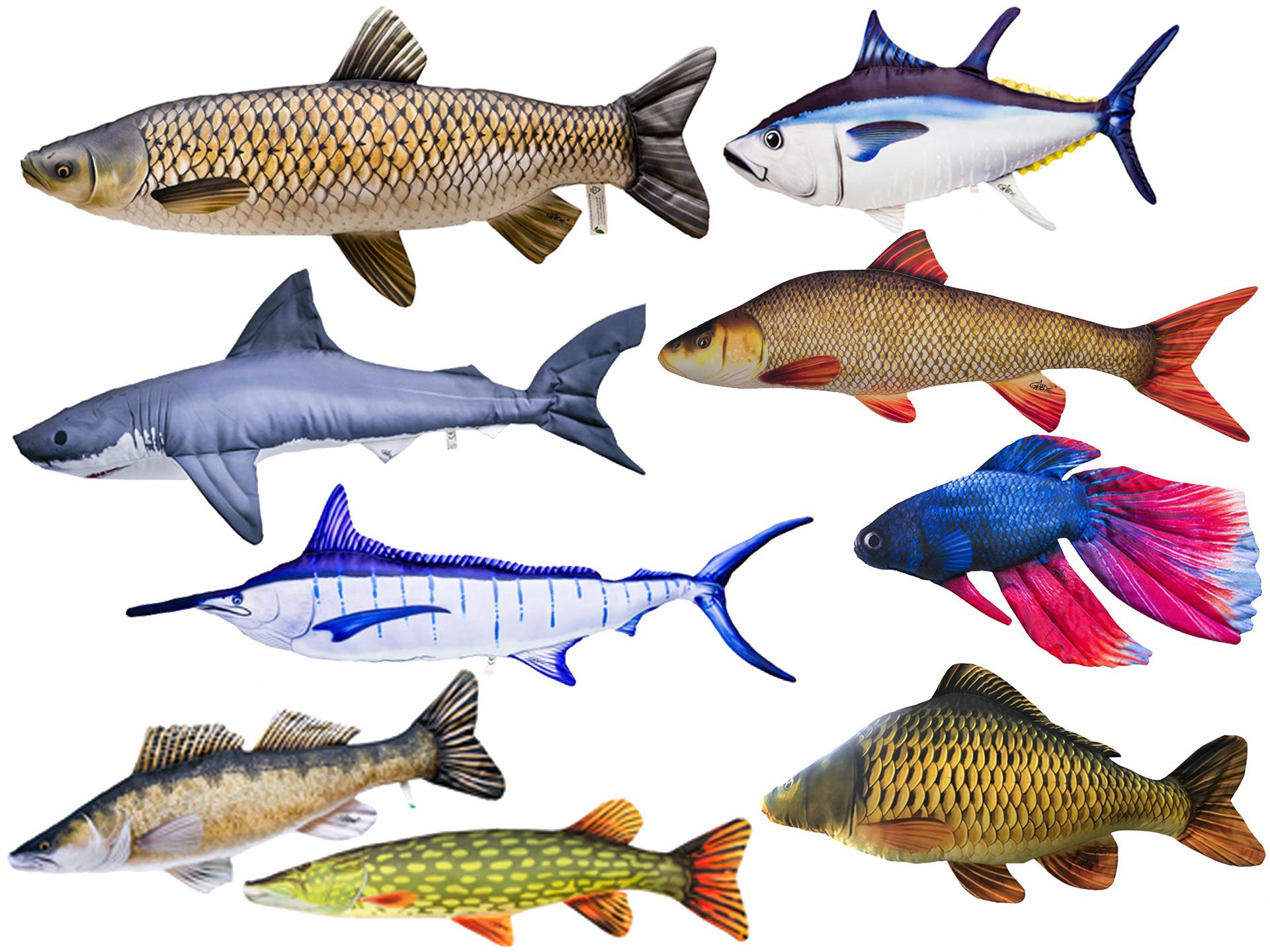 Az élethű halas párnáink választéka mostanra igen széles, bárki megtalálhatja köztük a számára leginkább szimpatikus változatot