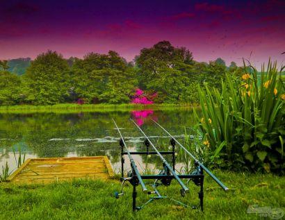 Angliában élni és horgászni