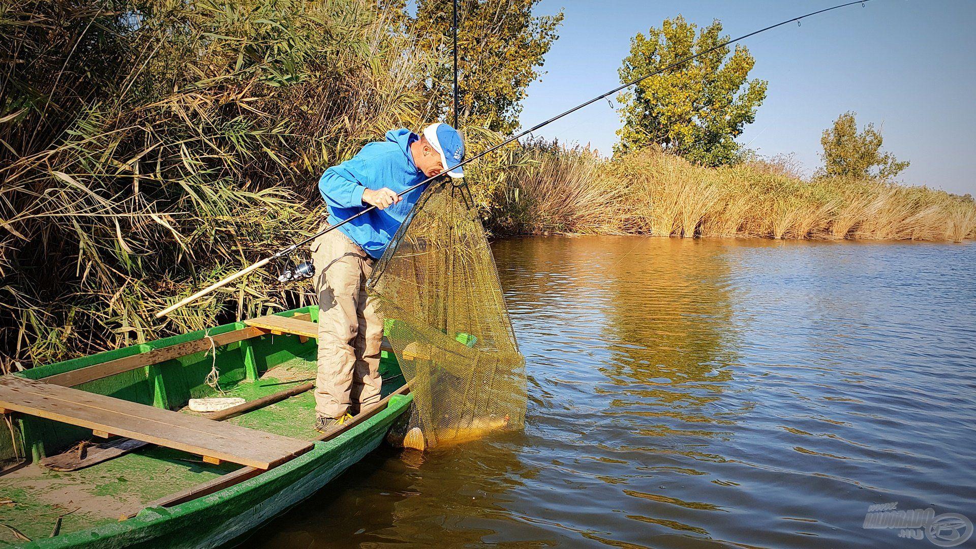 A következő hal sikeres szákba tereléséhez csónakba szálltam