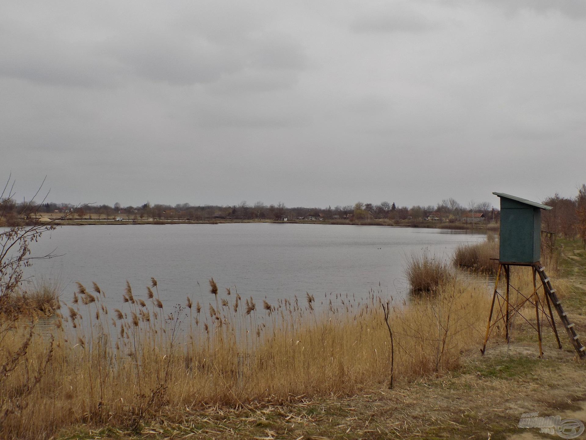 Fantasztikus panorámára pillanthatunk, amennyiben időt szánunk arra, hogy körbejárjuk a tavat. Aki kicsit is kedveli a bányatavak adta kiszámíthatatlanságot, annak bátran ajánlom ezt a vízterületet, akár feederbottal is!