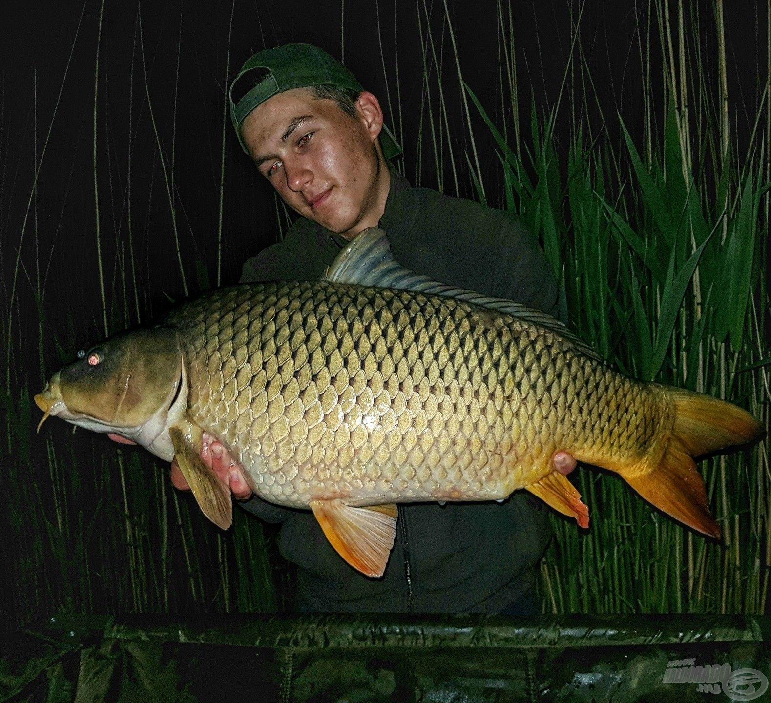 A második éjszaka első hala ez a szép töves volt