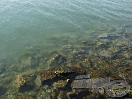 A laposabb partvédő kőszórások töve ritkán, inkább csak a küszök ívásakor ad süllőt