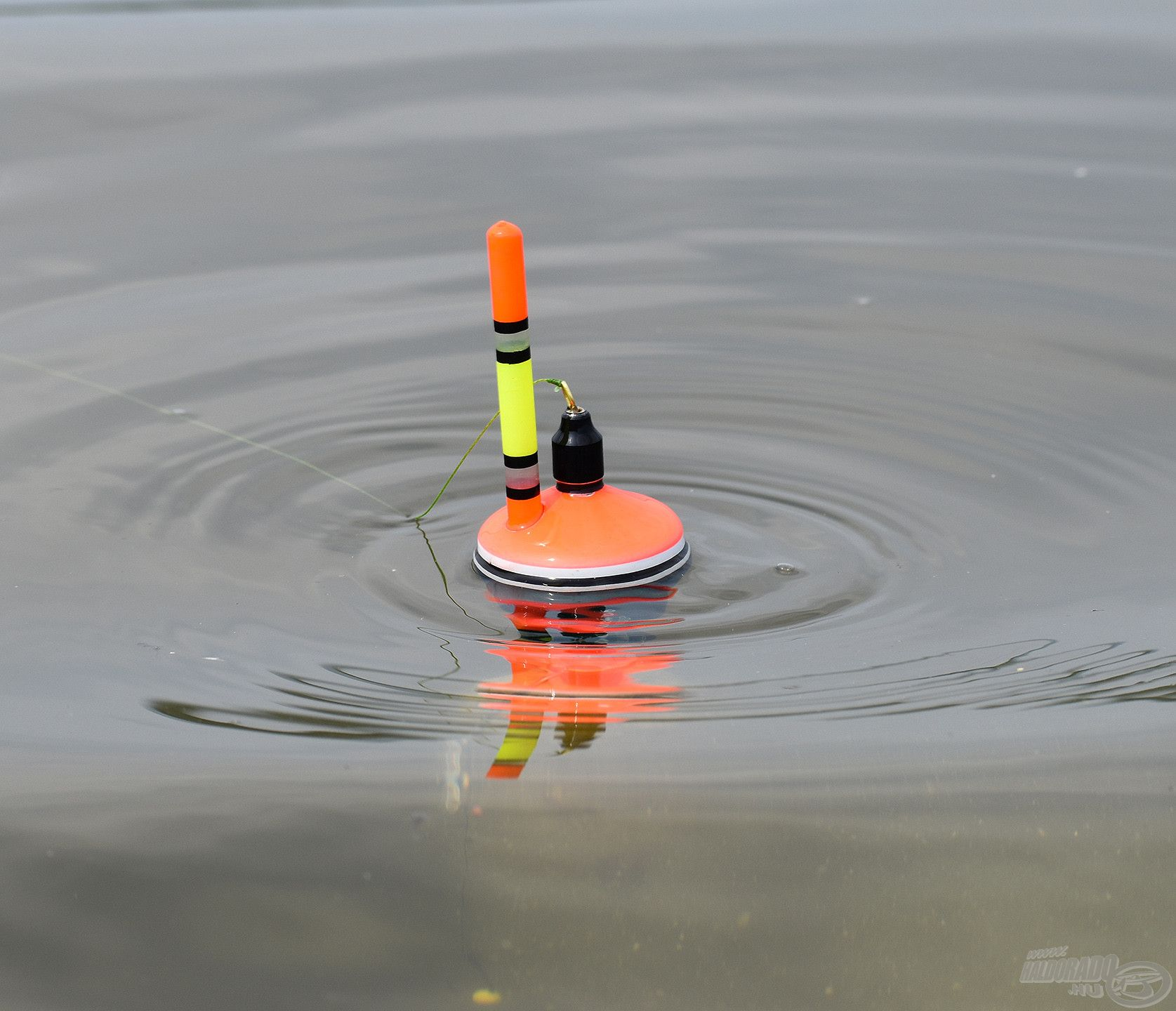 Ha az úszó etetőkosarának tartalma kiürül, a két fehér csík is felszínre kerül – ez jelzi, hogy itt az ideje újat dobni