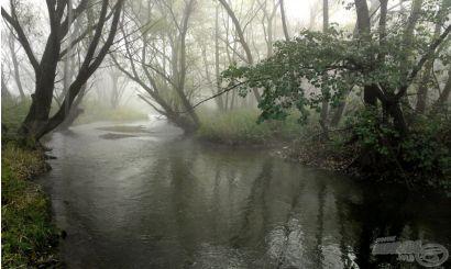Bogarászás egy rejtélyes patakon