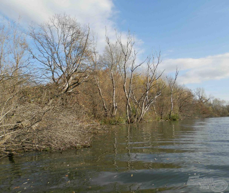 A Bodrog folyó novemberi ruhájában