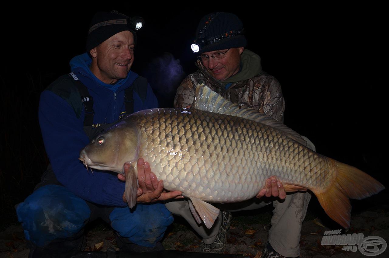 István második 20+-os hala