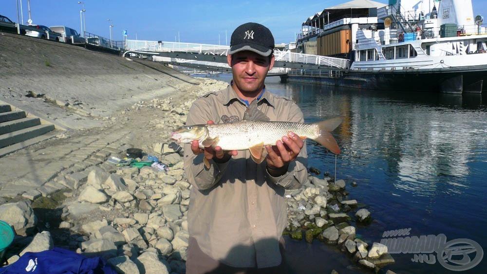 Nagyon szép halakat adott aznap a Duna…