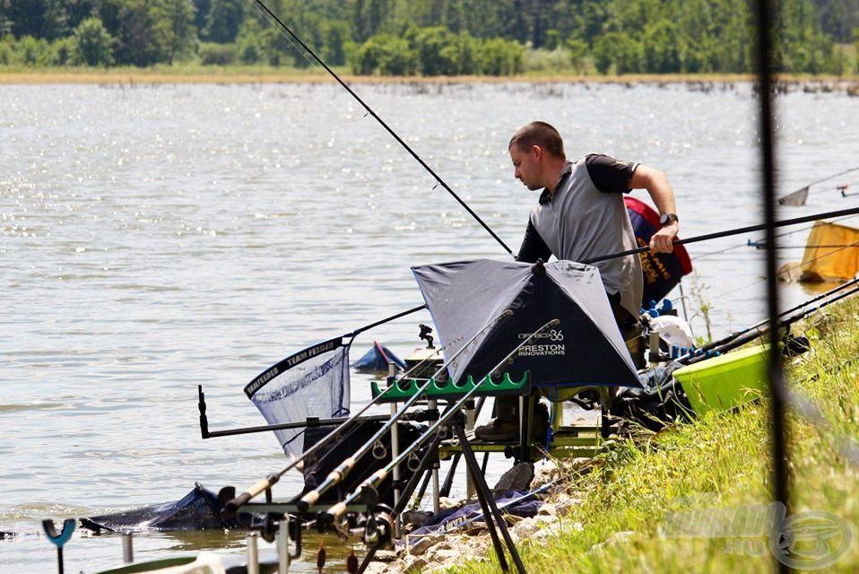 Ütemes és pontos horgászattal gyakran tudtam szákba terelni a jó súlyban lévő kárászokat