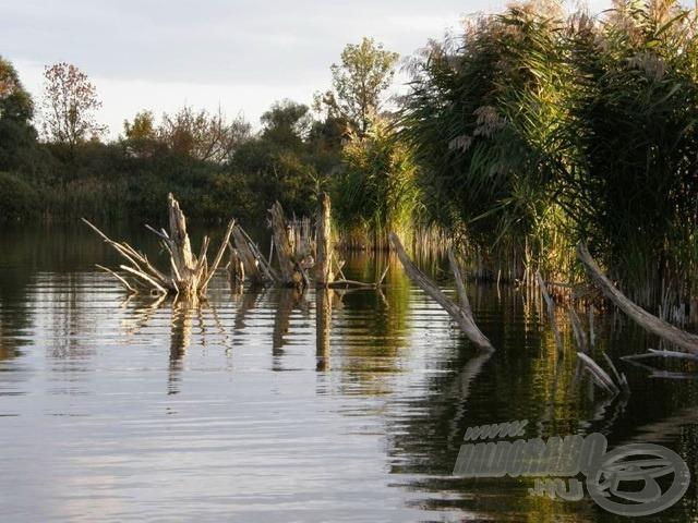 Tőzegbánya tó