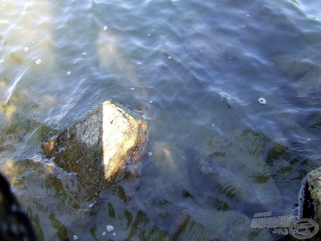 Ilyen kövekkel van tele a mederfenék