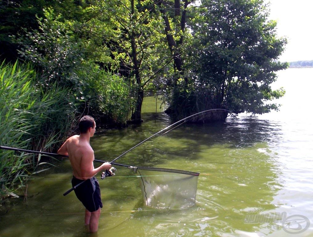 Vízben harcolva a nemes ellenféllel