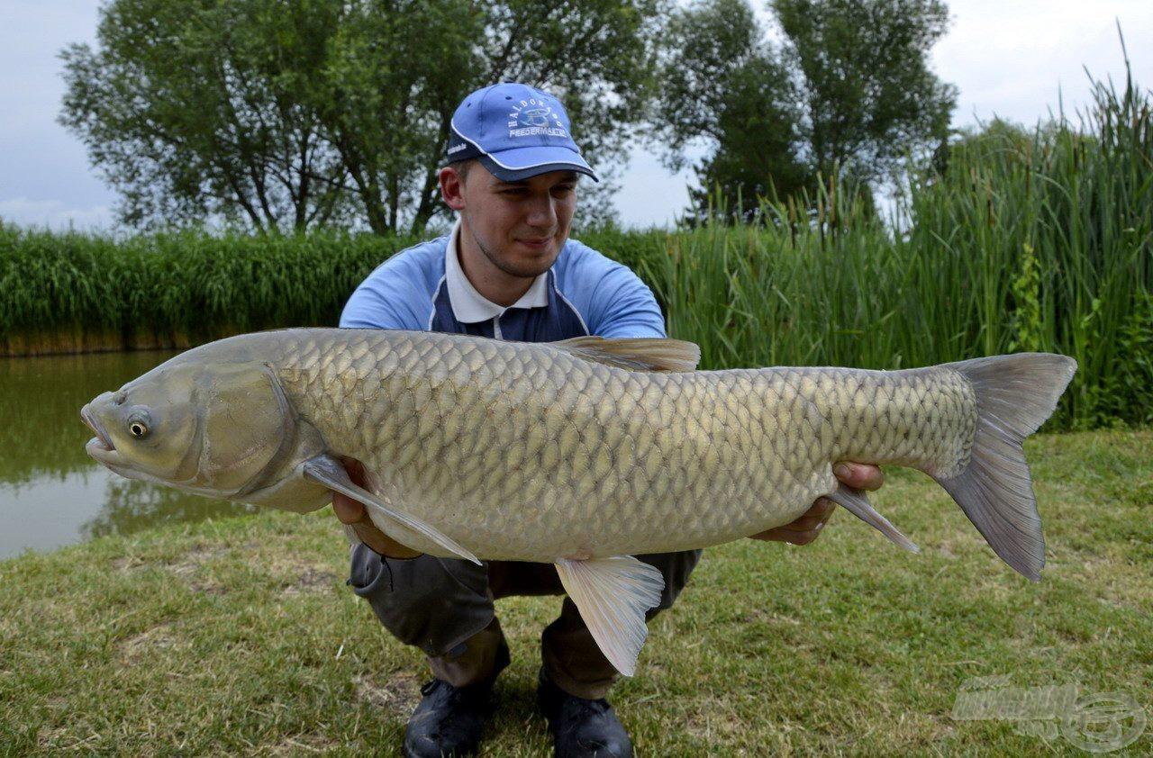 Gyönyörű, vaskos hal, mely majd kicsattant az egészségtől