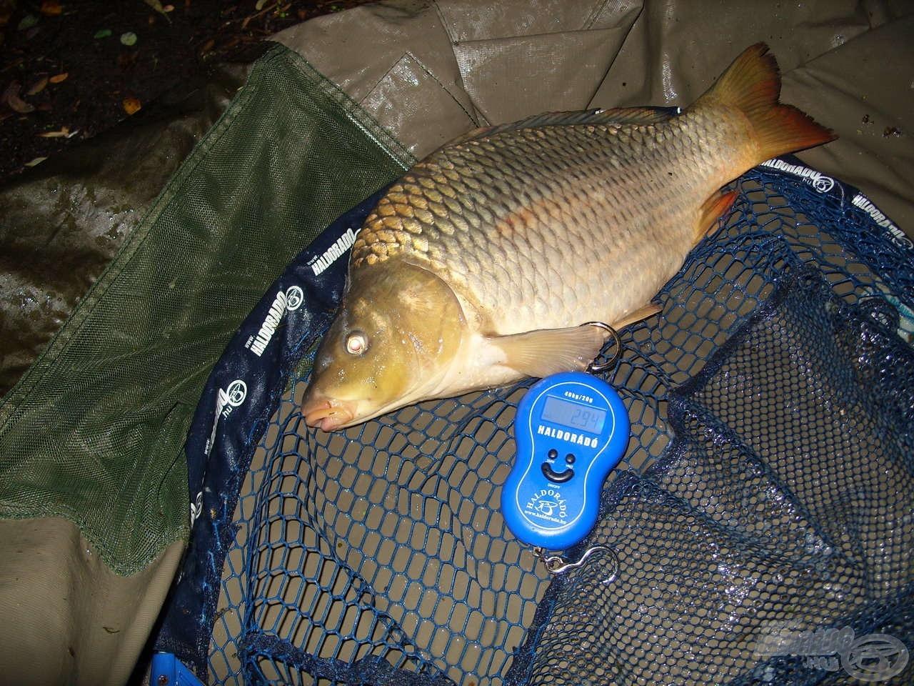 A horgászat utolsó pontya szintén szép súllyal büszkélkedhetett