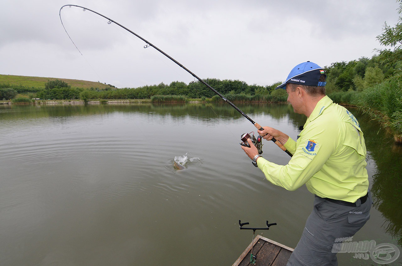 A nagytestű halak minden trükköt bevetettek, hogy szabaduljanak a horogtól…