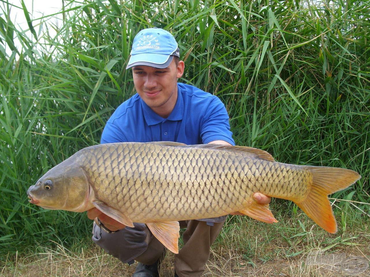 A korábbi horgászatok során sikerült néhány igazán termetes példányt is horogvégre kerítenem