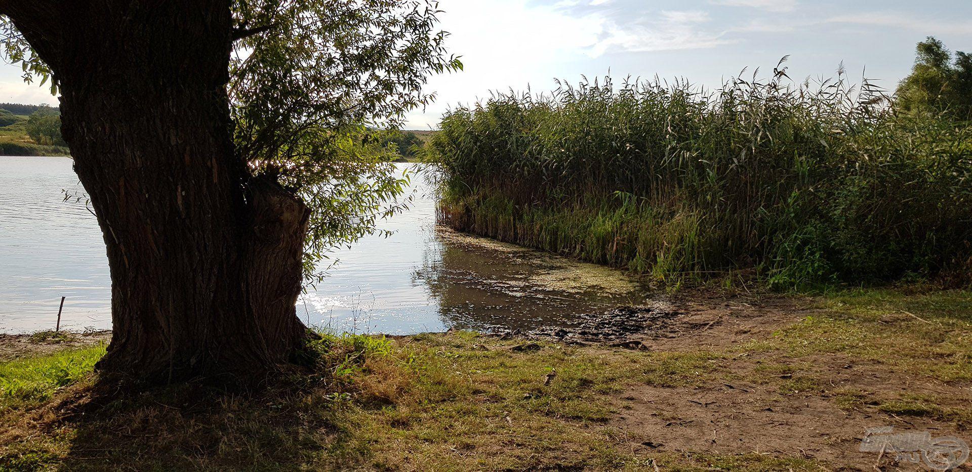 Horgászhelyünk a második nap