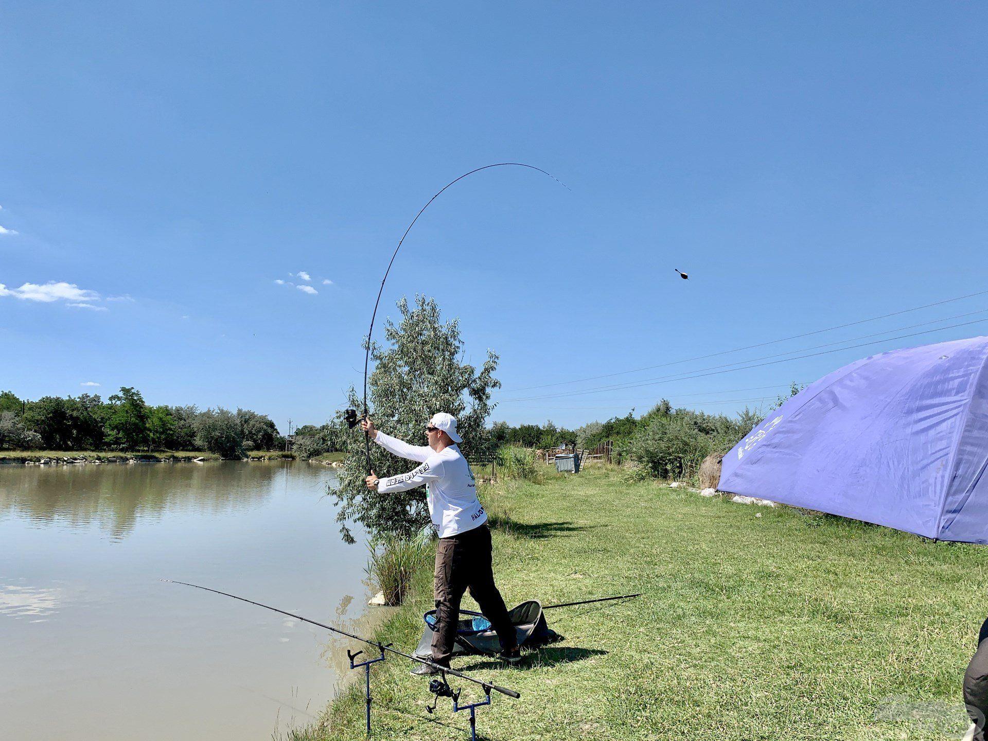 Pontosan a túlpart elé pár méterre horgásztam, ez itt szinte mindig működik