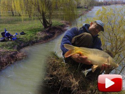Felmelegedő vizeken - Tavaszi feederes praktikák egyesületi tavakon