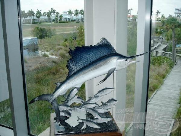 Remélem a tengeri horgászat során szerencsém lesz egy vitorláshalhoz