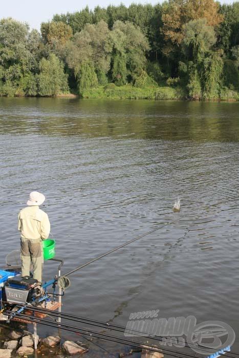 Az eredményes horgászat alapfeltétele a pontos, koncentrált etetés