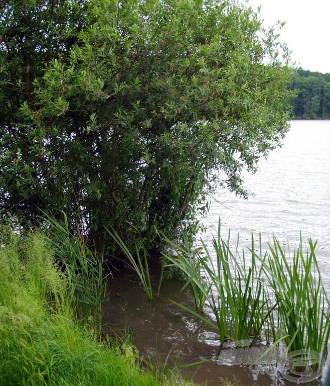 A csodaszép tó kiváló vízminőségéről árulkodik…
