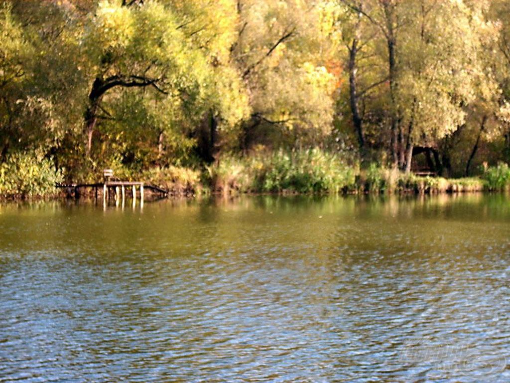 A helyszínről készült fotó: Látóhegyi I. tó