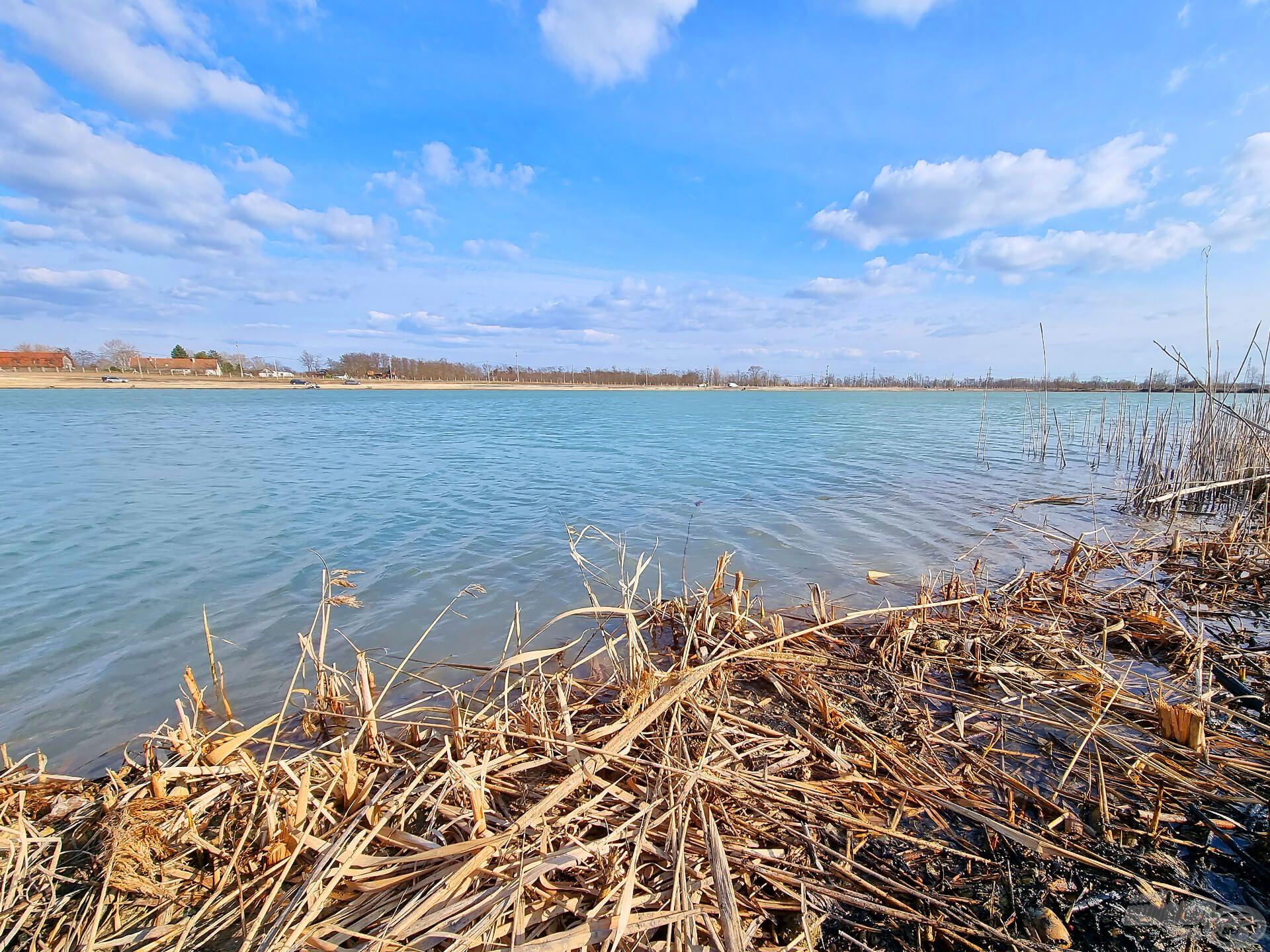 A tó jelenleg még tavaszi köntösben, de nyáron már teljes pompájában, nádassal körülölelve várja az ideérkezőket