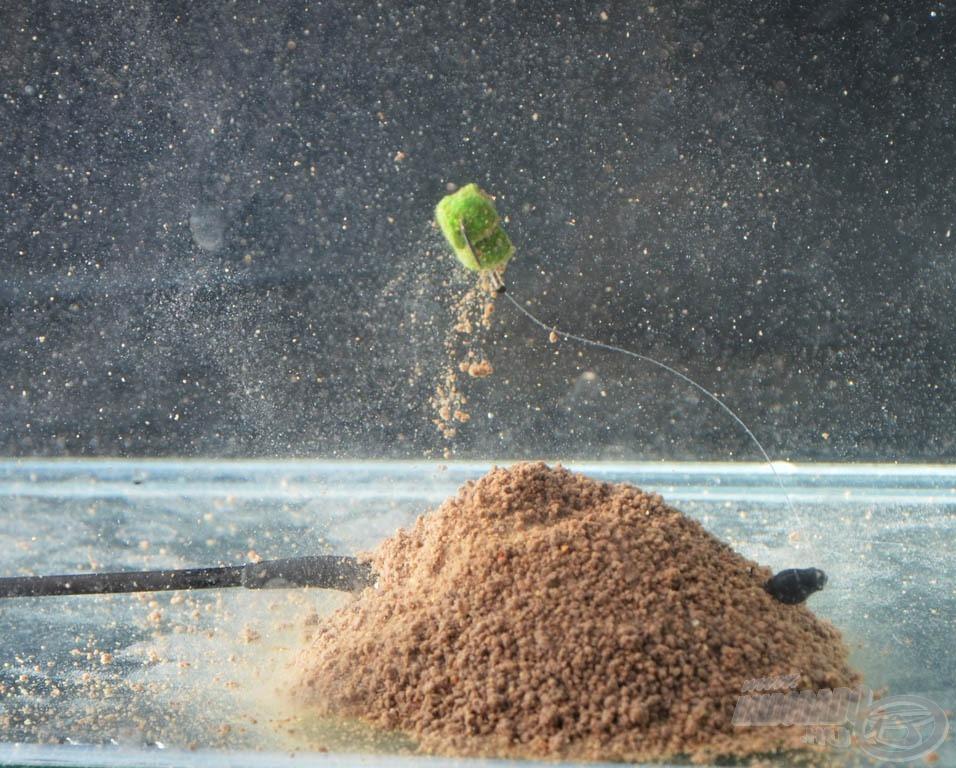 Az etetőanyagból kiváló felcsalizott horog kikerülhetetlenül kelleti magát a hal előtt