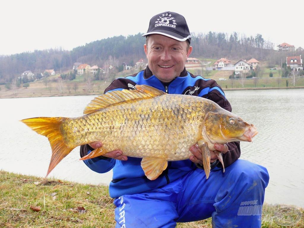 """A Zalacsányi """"aranya"""" a koi ponty, él a tóban kapitális méretű is!"""
