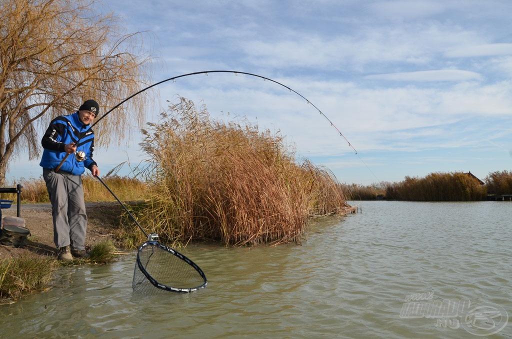 … a megakasztott halak meglepően vehemensen védekeztek