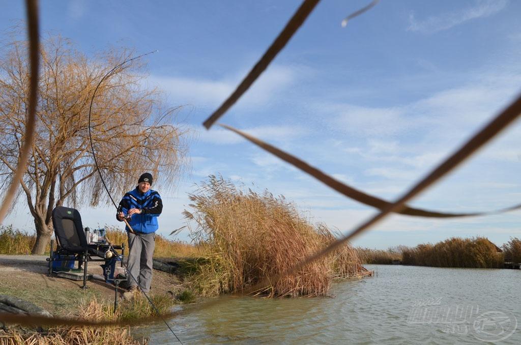 A keresőhorgászat most nem volt olyan eredményes, mint az etetett hely és környékének pontos horgászata