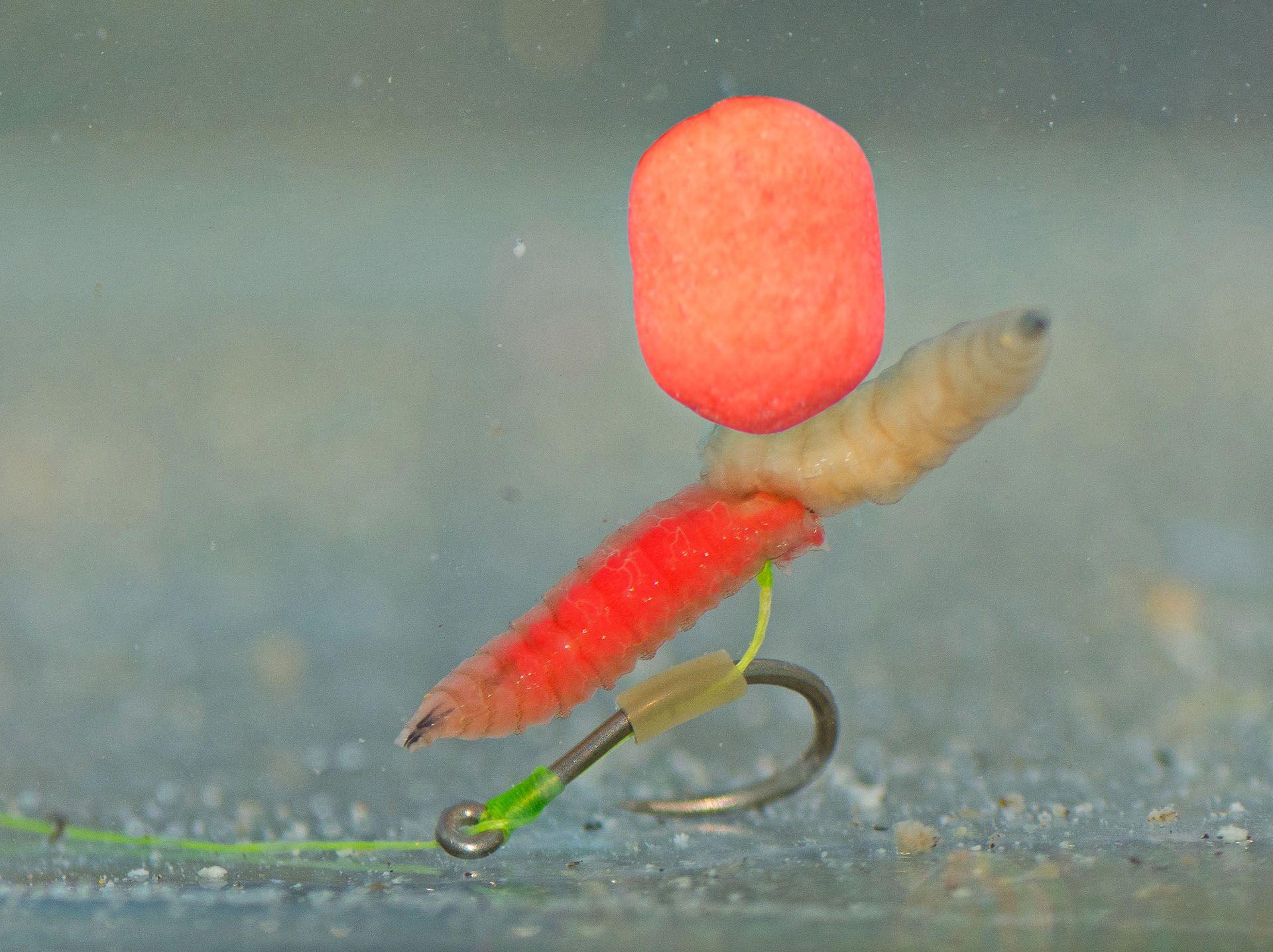 Így várja a halakat