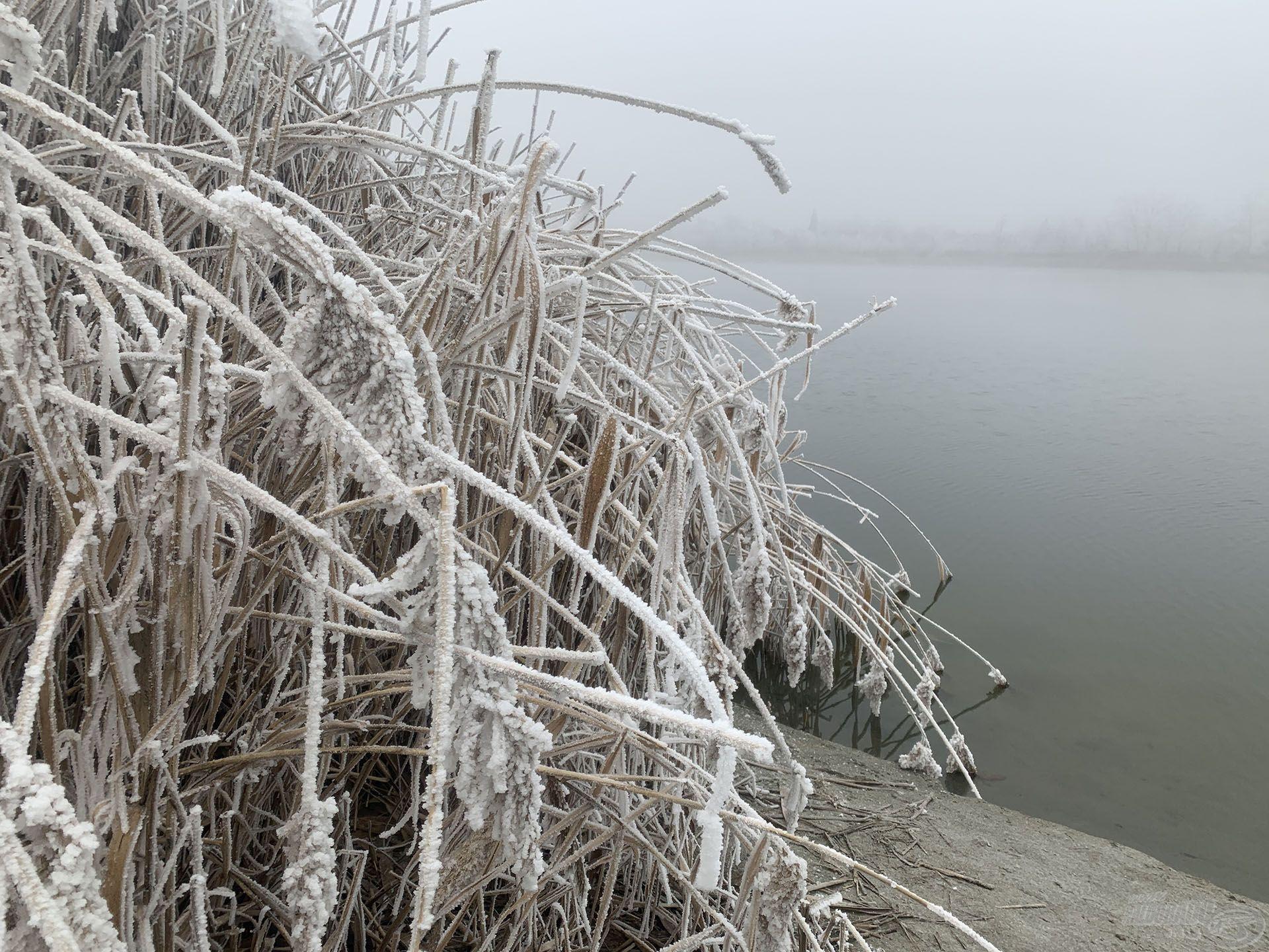 A hideg, zúzmarás időjárás sem szegte kedvét és titkon még egy nagy fogásban bizakodott