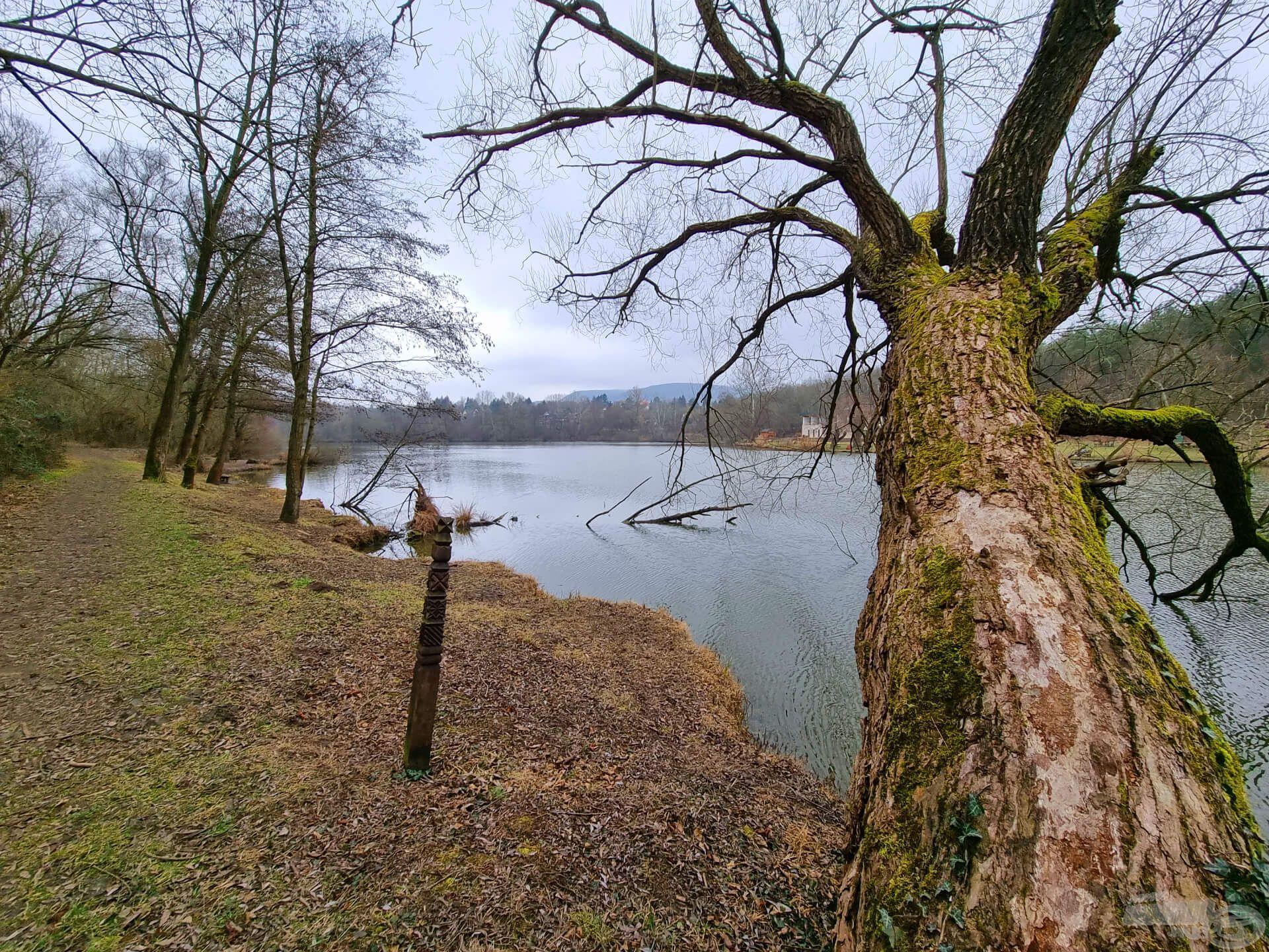 A Kerek-tó partján sokféle horgászhely közül választhatunk, de vajon hideg vízben merre lehetnek a halak?