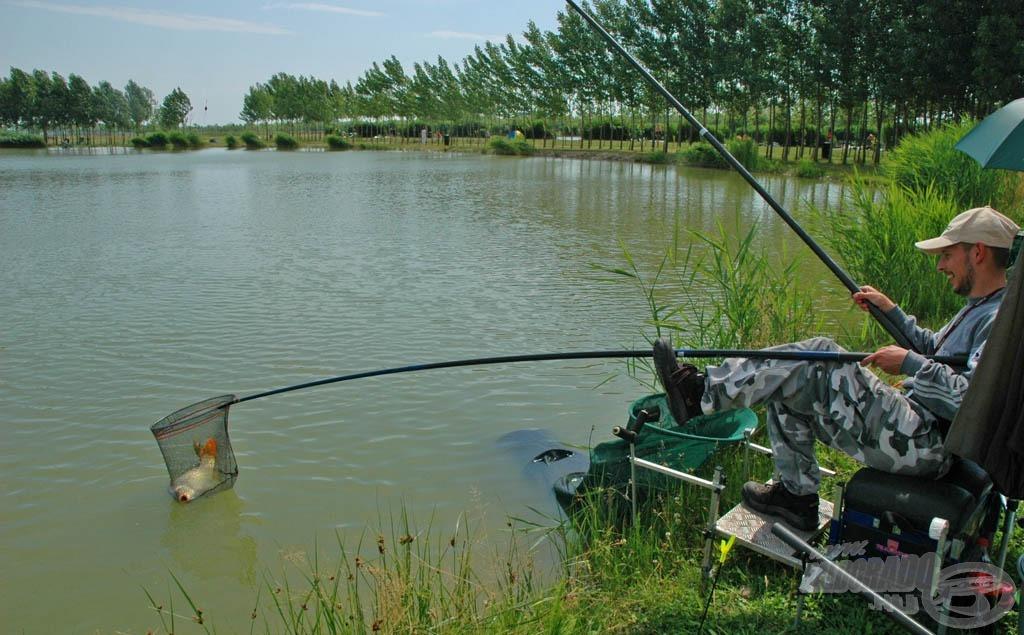 Balogh Attila rakós bottal szedegette halait