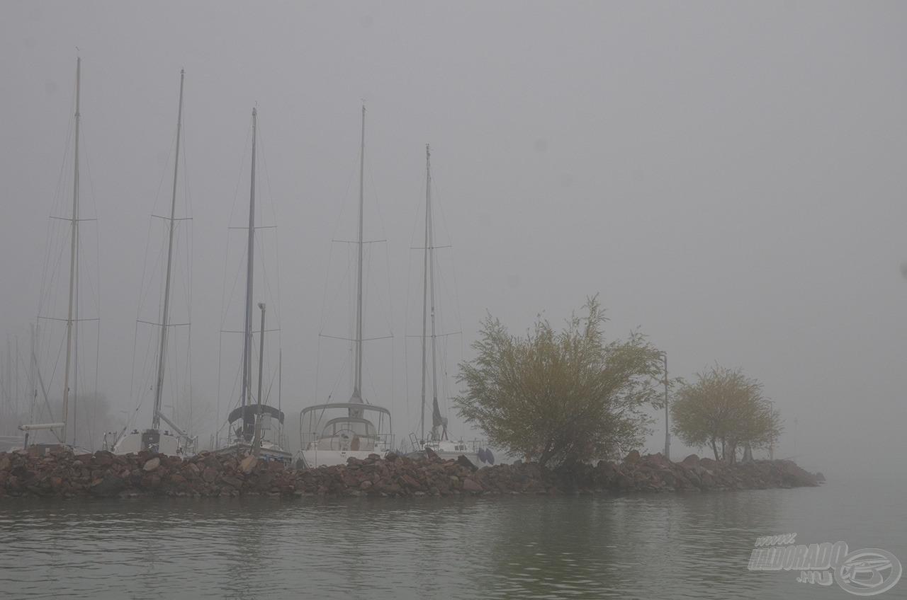 Ahogy kivilágosodott, hatalmas köd telepedett a tóra, alig 100 méterre csökkenet a látótávolság, de hát ősz van, késő ősz… sőt, lassan itt a tél a nyakunkon