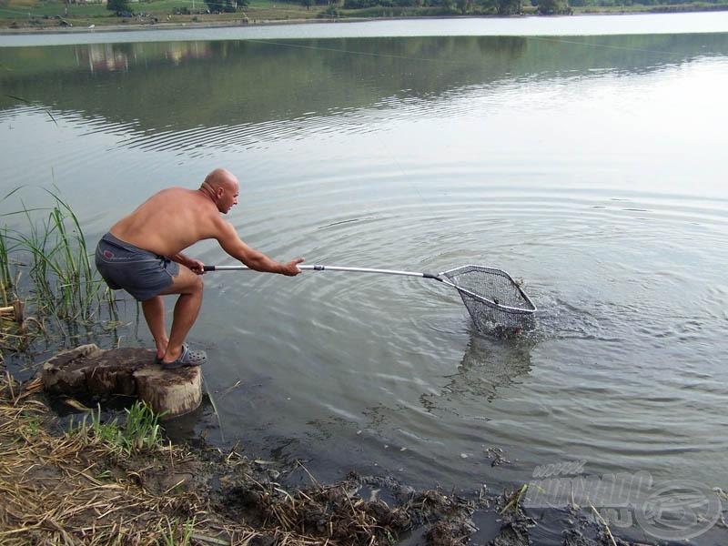 Gyurka mindent megtett, amit ő megtehetett! Dacolt a sekély vízzel is, merítette és tette el a halakat, amelyek egymás után érkeztek!