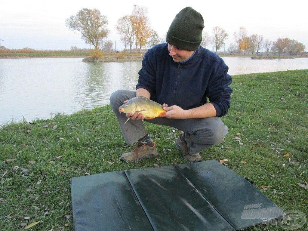A nap utolsó hala ez a kis tükrös volt
