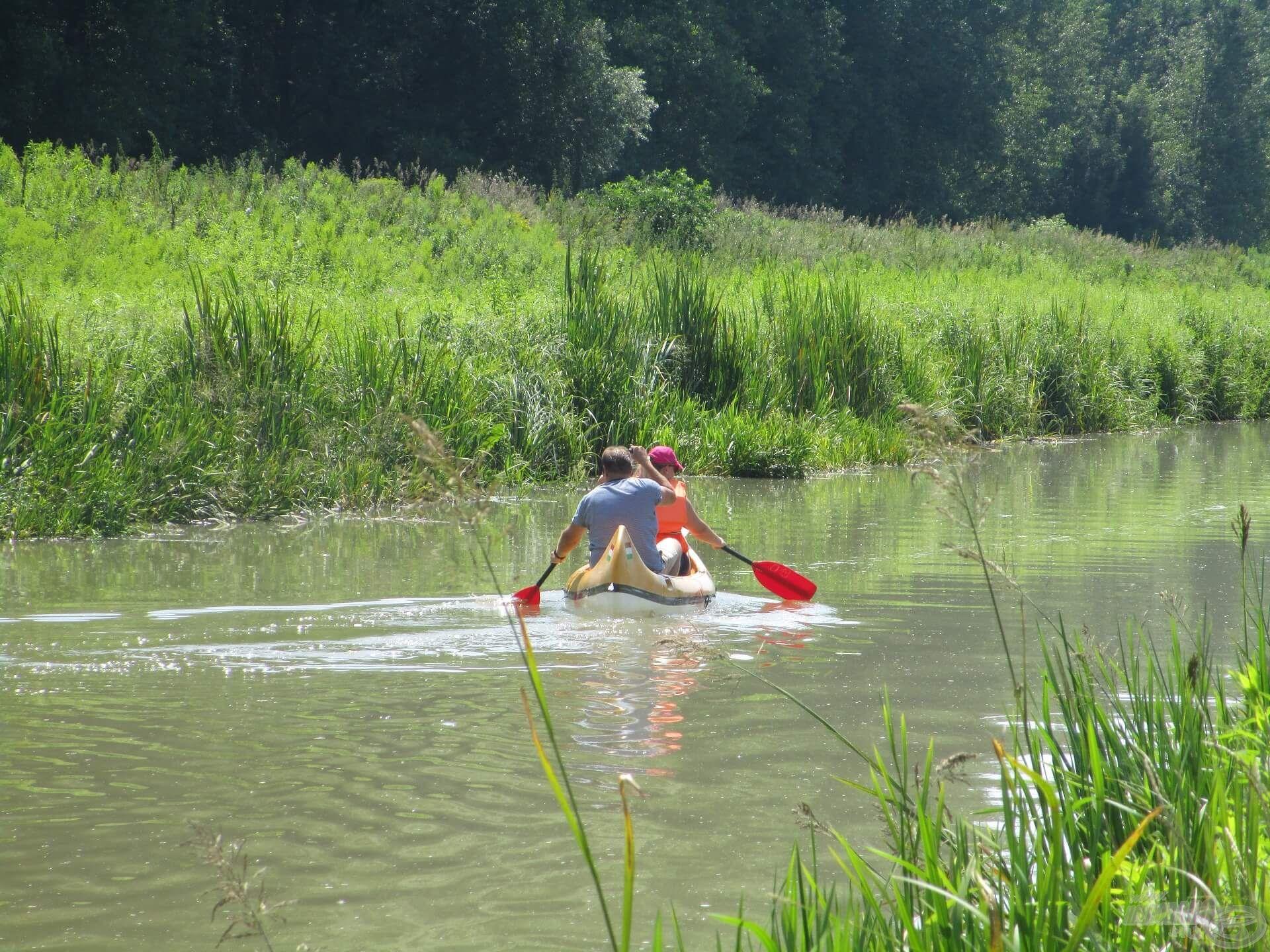 A Zala folyón is legtöbbször nyugodt horgászatokban van részem, bár néha az evezősök elzavarják a halakat