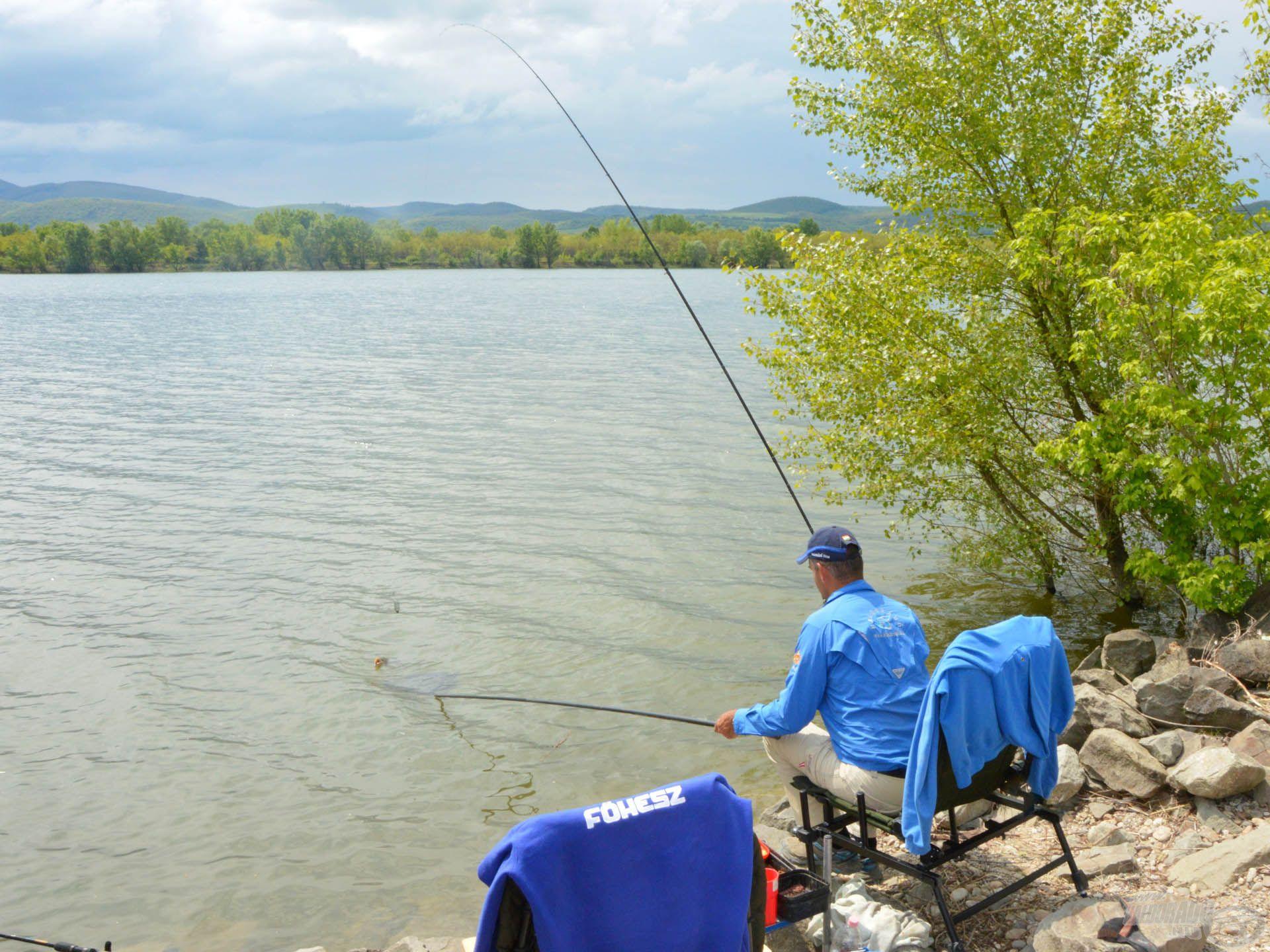 Ahogy egyre több giliszta került a horgászhelyre, úgy nőtt a halak mérete is
