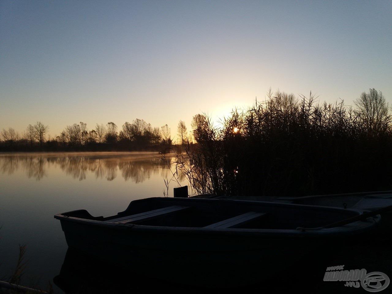 Lombhullás után a Király Ponty Horgásztavon